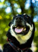 Moscow and Krasnodar! Samantha is looking for a home