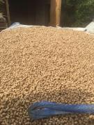 Продаю гранули з люцерни, деревини, соломи, лушпиння, жом